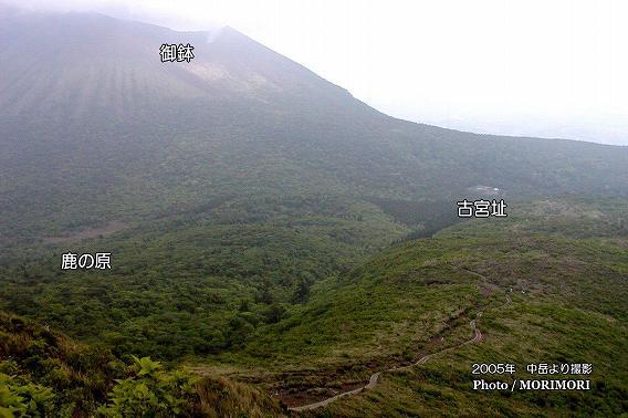 中岳よより撮影した鹿の原