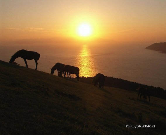 都井岬の夕景