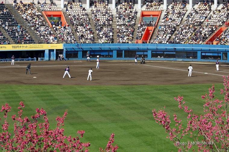 球春みやざきベースボールゲームズ 生目の杜運動公園アイビースタジアム