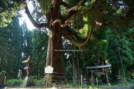 高千穂 中畑神社 02