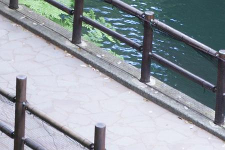 遊歩道のフェンス
