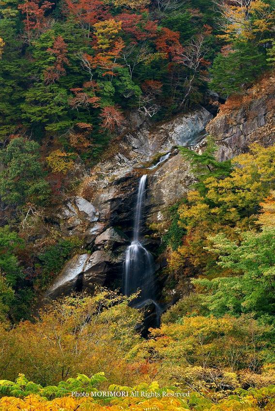 竜ヶ岩の滝の紅葉