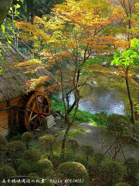 おのころ池周辺の紅葉