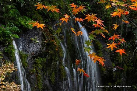 玉垂の滝 04