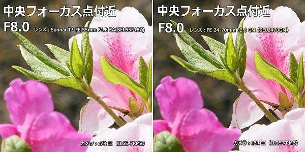 SEL55F18Z SEL2470GM F8中央比較