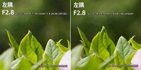 SEL55F18Z SEL2470GM F2.8左端比較