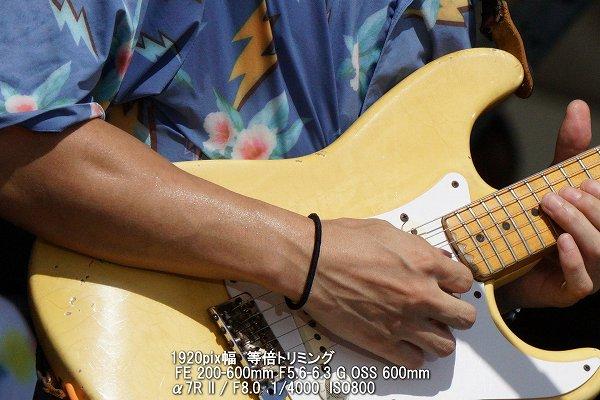 日中のフェスのギタリスト