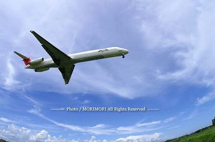 JAL3627 M81 福岡便 (フィッシュアイレンズで撮影)