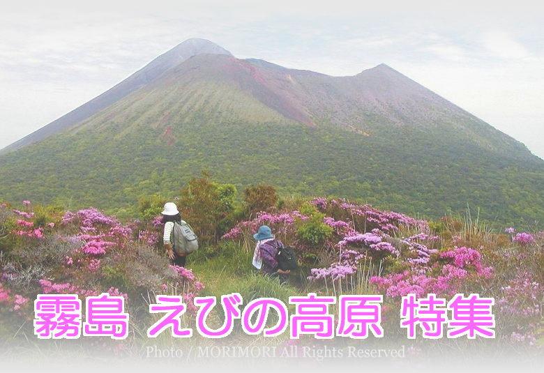 6cdbfa54a1 霧島観光 えびの高原~霧島  Kirishima-Ebino