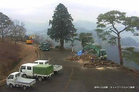 国見ヶ丘 伐採工事
